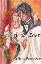 Accio Love (A Harry Potter and Ginny Weasley Wedding One-Shot) by Harrypotterfanlove
