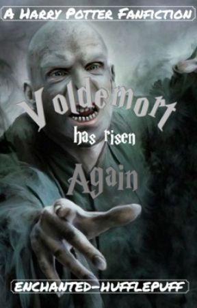 Voldemort Has Risen Again [Harry Potter Fanfiction