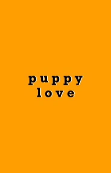 Puppy Love | Seventeen Mingyu Fanfic