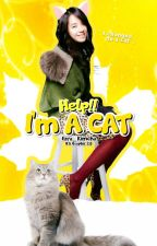 HELP!!IM A CAT by Ezra_Kimcha