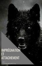 Impregnation et Attachement. by LauraMourette