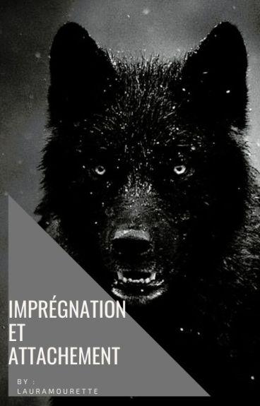Impregnation et Attachement.