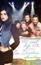 My Cool Life Or Love One Direction by isKarinaHoran