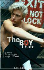 The Boy I Hate by AriadniP
