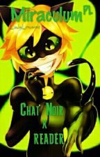 Miraculum: Chat Noir x reader (pl)  by Ladylousine