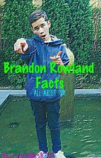 •BRANDON ROWLAND FACTS• by camilitadc01