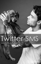 Twitter SMS//ljp✔ by puodelispriekavos