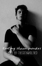 Texting Shawn Mendes (a fanfiction) by thegothwholived
