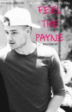 Feel The Payne- A Liam Payne Fanfiction by RandomCuz1