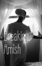 Breaking Amish by irememberbooksastuff
