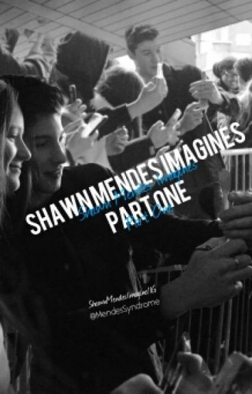Shawn Mendes Imagines Part 1