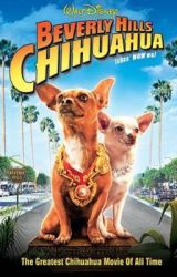 Beverly Hills Chihuahua RP by CTTheSeaWing