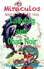Miraculos - Ladybug & Chat Noir - Volumul 3 - Since I've Met You by 09Diana16Elena90