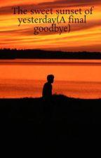 The sweet sunset of yesterday(A final goodbye) by StevenWertenberger