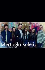 Mertoğlu koleji  by azrakrmn