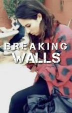 Breaking Walls (Lauren Cimorelli) by laurensflannels