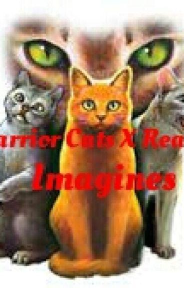 Warrior Cats X Reader Imagines