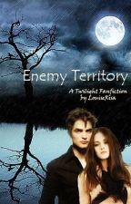 Enemy Territory by LouiseRisa