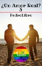 ¿Un Amor Real? 3: Vacaciones (Gay) by PedroLibro