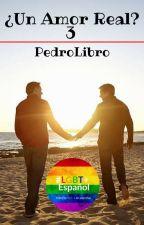 ¿Un Amor Real? 3: Vacaciones (Gay) by PedroLibro