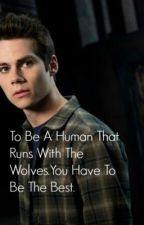 She Needs To Know: A TeenWolf/Stiles Stilinski FanFiction by IH8fandoms