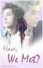 Have We Met? [EXO Fan Fiction] - Sequel to A Deer and A Baozi  by obsessedfanfics