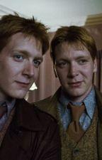 Fred e George Weasley by TizioFaraone