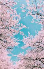 Seventeen Imagines by SweetSooHong