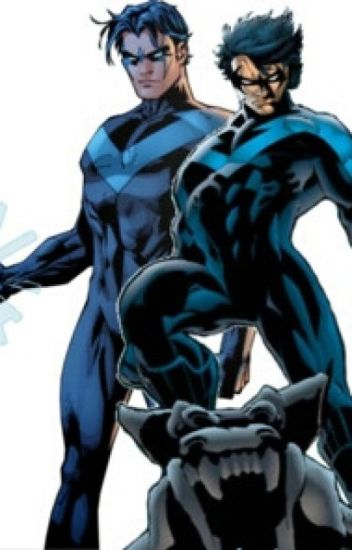 Nightwing X Reader One Shots Collection