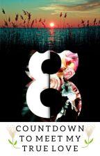 Countdown to Meet My True Love by MayuKimmy