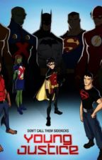 Apart of the team Young Justice fanfiction  by InuHinamori