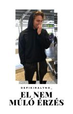el nem múló érzés // luke hemmings [BEFEJEZETT] by depikiralyno_