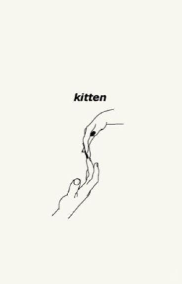 kitten; j.g + d.p cg/l au