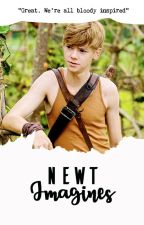 |TH| Newt Imagines (ฟิคแปล) by BookWormKnowItAll