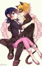 Marinette Y Chat Noir♡♥♡ by akiretkm
