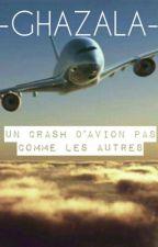 Chronique de Ghazala : Un crash d'avion pas comme les autres  by Lapailladiiiine