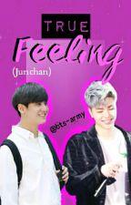 [COMPLETE] True Feelings (Junchan) by bts-army