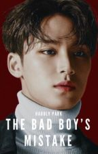 The Bad boy's Mistake | Mingyu FF by princesabangs