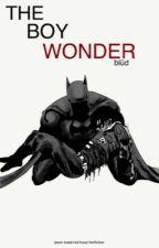 The Boy Wonder    Jason Todd (Robin/The Red Hood) Fan Fiction by iamnikmarie
