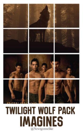 Twilight Wolf Pack Imagines