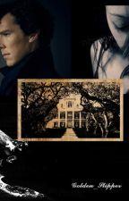 Sherlock Holmes: Memory in suitcase by Golden_Slipper