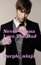 Never Gonna Love The Bad Boy by Purple_Ninjas