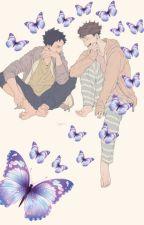 Butterfly. | IwaOi. by XB00KMAN
