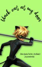 Black Cat At My Door (Chat Noir X Reader) by fanficsarewhereitsat