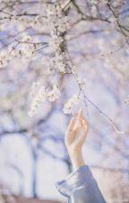 [Shortfic]-[VKook]-Tôi nhỡ yêu cậu mất rồi, làm sao đây? (tặng @Anlion123) by _likesb