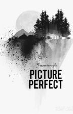 Picture Perfect by renaenaenuyda