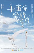 Mười lăm năm đợi chờ chim di trú 《十五年等待候鸟》 இ Doanh Phong (盈风) by chengfeng
