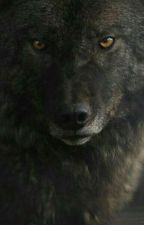 Ты моя волчица [Редактируется] by anastasia_joker_12