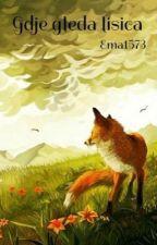 Gdje gleda lisica (Otkazano) by Ema1573