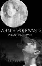 What A Wolf Wants (boyXboy) by PhantomSlayer